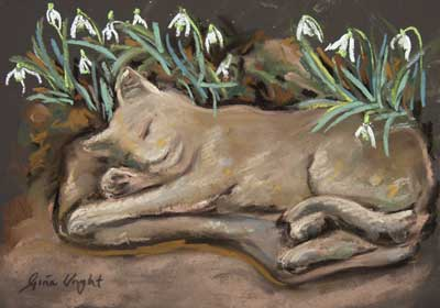 gina_wright_cat_and_snowdrops_pastel.jpg