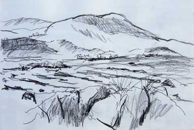 gina_wright_lendalfoot_beach_ayrshire_pencil_and_ink_sketch.jpg