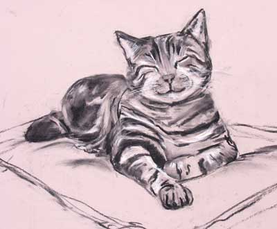 gina_wright_contented_cat_charcoal_and_conte.jpg
