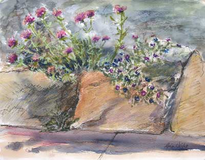 gina_wright_flowers_beside_the_path_watercolour1.jpg
