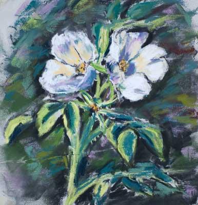 gina_wright_white_japanese_roses_pastel.jpg