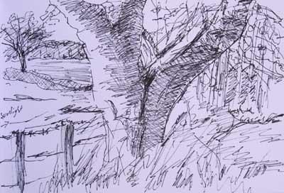 gina_wright_tree_at_forgan_ink.jpg