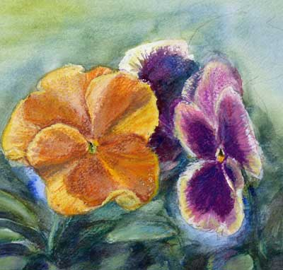 gina_wright_pansies_watercolour.jpg