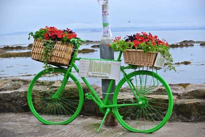 gina_wright_pittenweem_2013_flower_bike